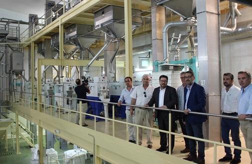 Sánchez Haro resalta el potencial de Andalucía como mayor productora de arroz de España con un 42% del total nacional