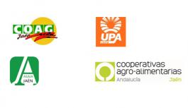 Organizaciones agrarias y cooperativas de Jaén acudirán a la manifestación del 23 de noviembre por la homologación de los quads