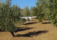 La primera promoción de piloto de dron de Asaja-Jaén aprende a volar los dispositivos entre los olivares