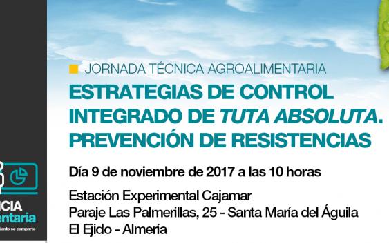 Este jueves tendrá lugar en El Ejido la jornada 'Estrategias de control integrado de Tuta absoluta. Prevención de resistencias'