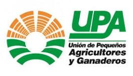 """UPA pide a la UE una """"respuesta contundente"""" tras la imposición de aranceles a la aceituna española en EE.UU"""