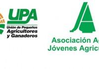 """UPA y ASAJA piden una """"respuesta contundente"""" a la UE y al Gobierno a EE.UU por el arancel preliminar a la aceituna negra española"""