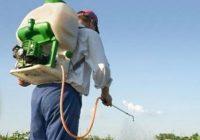 La Conferencia Sectorial de Agricultura y Desarrollo Rural aprueba el Plan Nacional para el Uso Sostenible de Productos Fitosanitarios