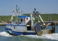 Abierto el plazo para solicitar ayudas a la comercialización y transformación de productos pesqueros y acuícolas
