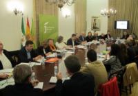 El expediente para la declaración de los Paisajes del Olivar como Patrimonio Mundial se entregará en enero al Ministerio de Cultura