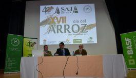 Los arroceros instan a la UE a establecer un contingente que limite la entrada de arroz de terceros países