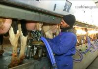 VÍDEO: La Consejería de Agricultura avanza en Desarrollo Rural