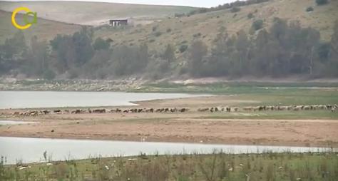 La CHG solicita al Gobierno la aprobación del Real Decreto de la Sequía en la cuenca
