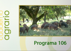 Cuaderno Agrario PGM 106