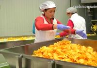 VÍDEO: Agricultura avanza en Desarrollo Rural y empleo femenino