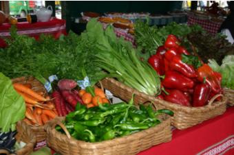 La Junta resalta la importancia de formar a los escolares para revertir el descenso en el consumo de frutas y verduras