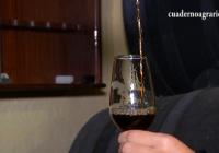 VÍDEO: Páez Morilla: Vinagre de Jerez con denominación de origen