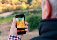El Ministerio de Agricultura informa sobre ayudas a la digitalización y al Programa de asesores digitales dirigidas a PYMES