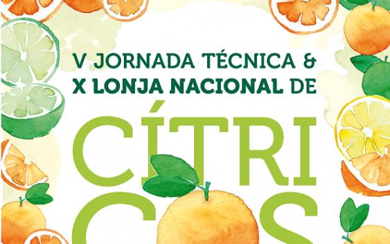 Palma del Río acogerá la X Lonja Nacional de Cítricos