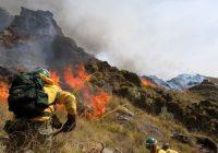 El Consejo de Ministros aprueba el Plan de actuaciones de prevención y lucha contra los incendios forestales para 2018