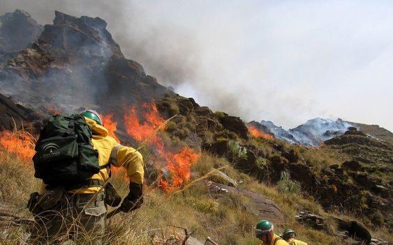 Asaja exige a Medio Ambiente que no demore más la publicación de las ayudas para la prevención de incendios forestales