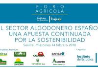 VÍDEO: El sector algodonero español: Una apuesta continuada por la sostenibilidad