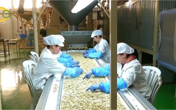 Cooperativas Agro-Alimentarias impulsa la innovación a través de 14 Grupos Operativos