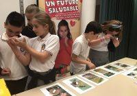 Los niños andaluces aprenden con La Unión Junior a cuidar su salud y a conocer nuestra agricultura