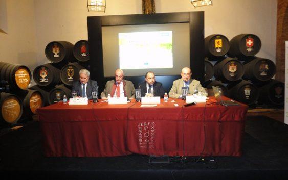 Cooperativas Agro-alimentarias de Andalucía insta a la integración del sector vitivinícola para ser más competitivos en los mercado