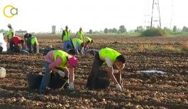 El Ministerio de Agricultura convoca ayudas a la integración asociativa por 1,75 millones de euros