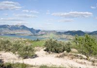 UPA Andalucía solicita que se apruebe el decreto de sequía en la Cuenca Mediterránea