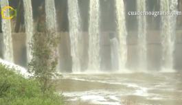 VÍDEO: Situación actual del campo andaluz con las lluvias