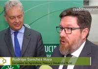 VÍDEO: El sector agroalimentario andaluz se prepara para el Brexit