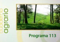 Cuaderno Agrario PGM 113