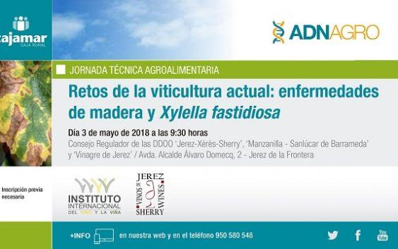 El próximo 3 de mayo se celebrará la jornada 'Retos de la viticultura actual: enfermedades de madera yXylella fastidiosa' en Jerez