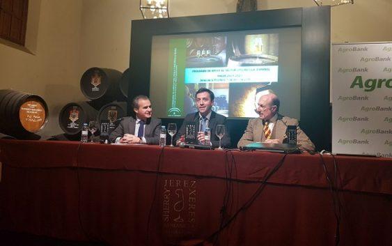 Agricultura articula las ayudas a la reestructuración, la inversión y la promoción del sector vitivinícola en 2019-2023
