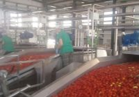 La Junta otorga 16 millones de euros en ayudas para la modernización de industrias de la línea de grandes empresas