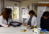 VÍDEO: El Ifapa apuesta por la innovación y el conocimiento