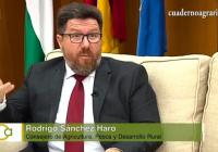 """Sánchez Haro considera una """"garantía de futuro"""" que los jóvenes vean en la agricultura el sector con más posibilidades"""