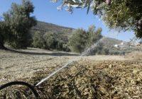 UPA Jaén reclama a la CHG que los regantes con autorización en campañas pasadas puedan beneficiarse del riego extraordinario