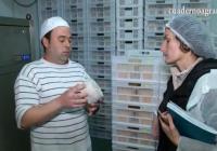 VÍDEO: Los quesos payoyos artesanos triunfan en EEUU
