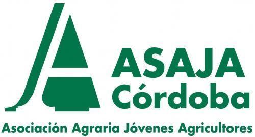 Asaja lamenta que la Junta y el Gobierno no hayan sabido rectificar los módulos para los olivareros de aceite cordobeses