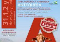 Agrogant´18: XXIX Concurso Subasta Nacional y XI Concurso de Producción de la Raza Caprina Malagueña en Antequera