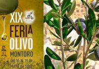 VÍDEO: XIX edición de la Feria del Olivo de Montoro, Córdoba