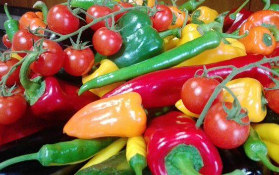 La Mesa de coordinación de la calidad alimentaria incide en la supervisión de la calidad de los productos alimentarios