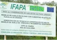 VÍDEO: Elaboración de aceite ecológico en el IFAPA de Cabra