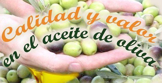 UPA Jaén y Deoleo celebran unas jornadas para analizar la calidad y el valor en el aceite de oliva