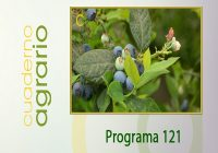 Cuaderno Agrario PGM 121