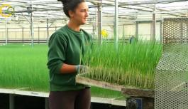 I Jornada de Socias de Cooperativas Agro-alimentarias para impulsar su participación en los órganos de decisión