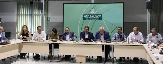 Agricultura anima al sector de la aceituna a su integración para defender mejor su producción y en ganar proyección comercial
