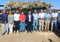 Sánchez Haro ofrece la colaboración de la Junta e insta al esfuerzo de todos para preservar la raza caballar marismeña