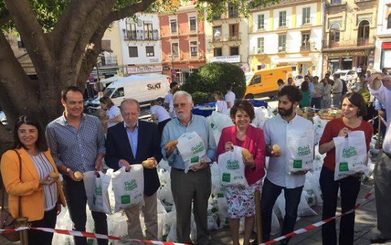 Los consumidores sevillanos, testigos en Triana de la deficiencia de la patata francesa de conservación