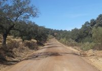 La Consejería de Agricultura subvenciona con 570.000 euros la mejora de caminos rurales de comunidades de regantes
