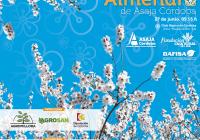 Asaja organiza sus terceras jornadas técnicas de almendro en Córdoba