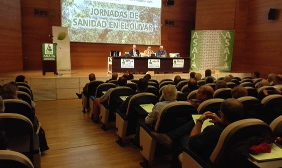 Dos centenares de agricultores acuden a las jornadas sobre sanidad en el olivar de Asaja Jaén